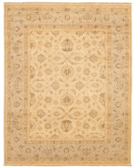 Bordered  Traditional Ivory Area rug 6x9 Pakistani Hand-knotted 328527
