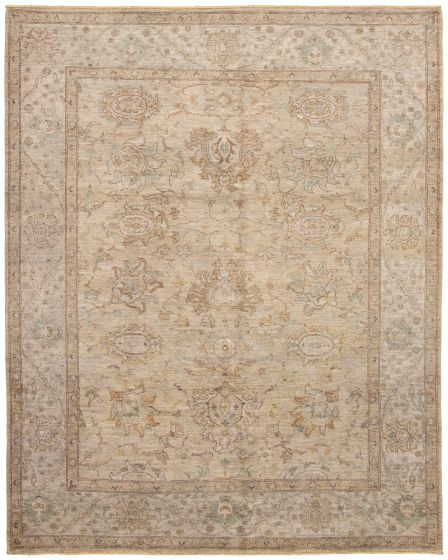 Bordered  Transitional Grey Area rug 6x9 Pakistani Hand-knotted 330653