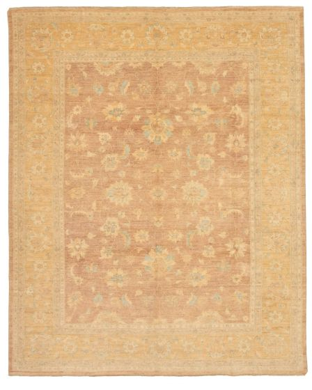 Bordered  Traditional Brown Area rug 6x9 Pakistani Hand-knotted 330657