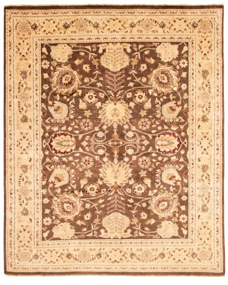 Bordered  Traditional Brown Area rug 8x10 Pakistani Hand-knotted 337617